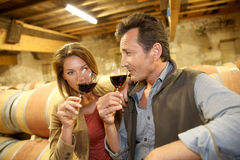 Oenologists tasting new wine production in wine cellar Royalty Free Stock Images