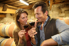 Oenologists tasting red wine Royalty Free Stock Images