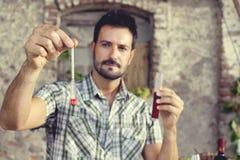 Oenology που μετρά το ποσοστό της ζάχαρης του κρασιού στοκ εικόνες