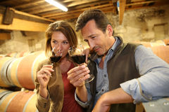 Oeonologists smelling red wine Royalty Free Stock Image