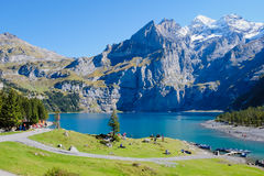 Oeschinensee Oeschinen lake. The panorama in summer Mountain in Oeschinensee Oeschinen lake Royalty Free Stock Images