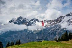 Oeschinensee - Schweiz Royaltyfri Foto