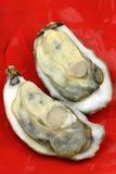 Oester in shell Stock Afbeeldingen