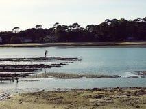 Oesterbedden die bij Meer in Frankrijk bewerken Stock Fotografie