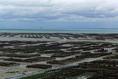 Oesterlandbouwbedrijven in Frankrijk stock afbeeldingen