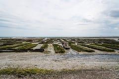 Oesterlandbouwbedrijven at low tide in Cancale royalty-vrije stock fotografie