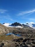 Oetztal : Gurgler冰川 库存图片