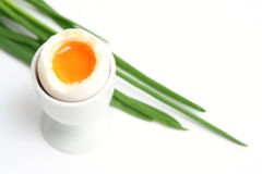 Oeuf images stock