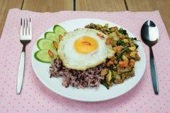 Oeuf au plat avec du porc et le basilic hachés faits sauter à feu vif, nourriture thaïlandaise Photos libres de droits