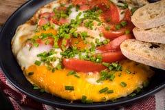 Oeuf au plat fait maison de petit déjeuner avec la tomate Image libre de droits
