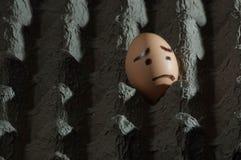 Oeuf avec le visage triste dans le plateau d'oeufs Images stock