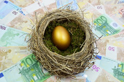 Oeuf d'or dans le nid image libre de droits