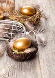 Oeuf d'or des poulets dans le nid photo libre de droits