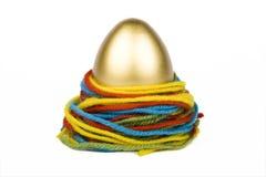 Oeuf d'or et amorçages colorés Images libres de droits