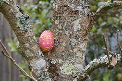 Oeuf de chocolat caché dans un arbre pour Pâques image stock