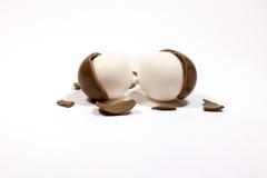 Oeuf de chocolat criqué cassé avec des morceaux d'isolement sur le backg blanc Image stock