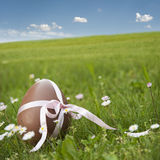 Oeuf de pâques Photographie stock libre de droits