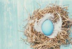 Oeuf de pâques bleu dans le nid Photos libres de droits