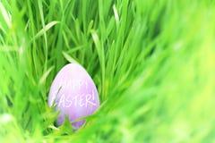 Oeuf de pâques caché dans l'herbe verte Photo libre de droits