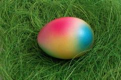 Oeuf de pâques coloré image stock