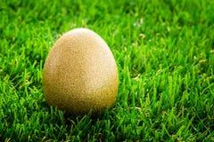 Oeuf de pâques d'or caché dans l'herbe verte Photo stock