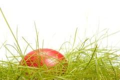 Oeuf de pâques dans l'herbe Photographie stock libre de droits