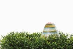 Oeuf de pâques dans l'herbe Image stock