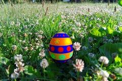 Oeuf de pâques dans l'herbe Photographie stock