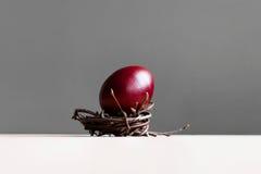 Oeuf de pâques dans le nid Photo libre de droits
