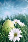 Oeuf de pâques dessus dans l'herbe avec le ciel lumineux de ressort Images libres de droits