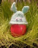 Oeuf de pâques drôle avec des oreilles de lapin Photo stock