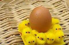Oeuf de pâques et poussins jaunes Images stock