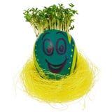 Oeuf de pâques peint dans un visage souriant drôle et des modèles colorés Photographie stock libre de droits