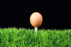 Oeuf de pâques sur le té de golf Photographie stock