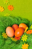 Oeuf de source de Pâques images libres de droits
