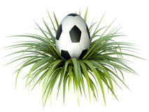 Oeuf du football Images stock