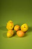 Oeuf et oiseaux de pâques Photographie stock libre de droits