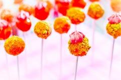 Oeuf et pistache de sucette pour les parties des enfants Photos stock
