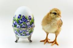 Oeuf et poussin décoratifs de porcelaine Photos libres de droits