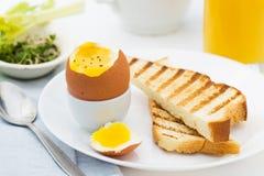 Oeuf à la coque mol avec du pain grillé pour le petit déjeuner riche Photographie stock