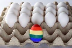 Oeuf peint comme un drapeau de LGBT Glorifiez le transsexuel bisexuel gai lesbien de droites du mois LGBT Mois de fiert? de symbo photos libres de droits