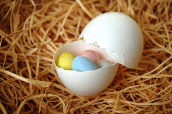 Oeuf rempli de Mini Chocolate Eggs Photographie stock libre de droits