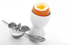 Oeuf Soft-boiled Photos stock