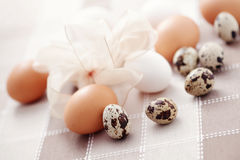 Oeufs Photographie stock