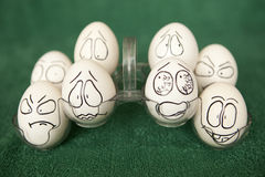 Oeufs. Image stock