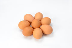 8 oeufs Image stock