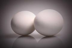 Oeufs blancs photographie stock libre de droits