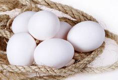 Oeufs blancs Images stock
