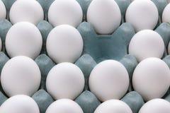Oeufs blancs dans l'emballage Photos libres de droits