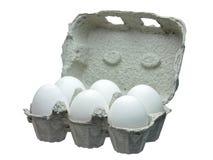 Oeufs blancs dans le récipient d'isolement Photos stock